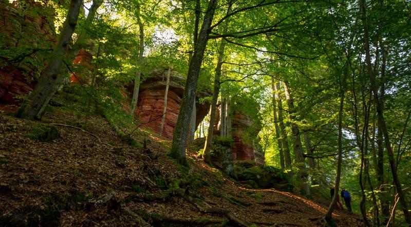 Der Altschloßpfad zum Altschloßfelsen - Unverhofft beeindruckend 147