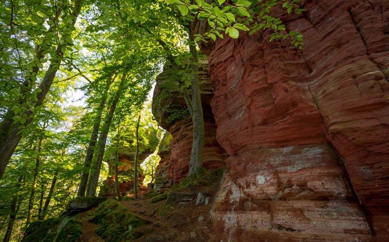 Der Altschloßpfad zum Altschloßfelsen - Unverhofft beeindruckend 151