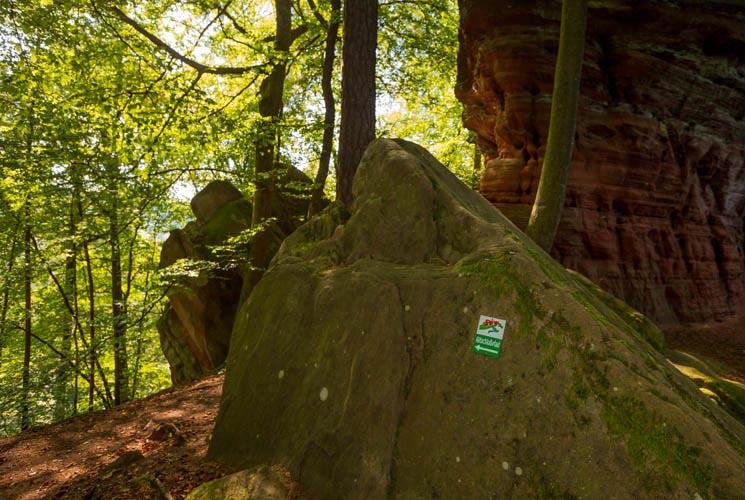 Der Altschloßpfad zum Altschloßfelsen - Unverhofft beeindruckend 166