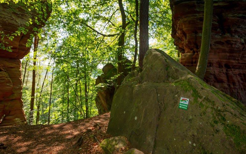Der Altschloßpfad zum Altschloßfelsen - Unverhofft beeindruckend 167