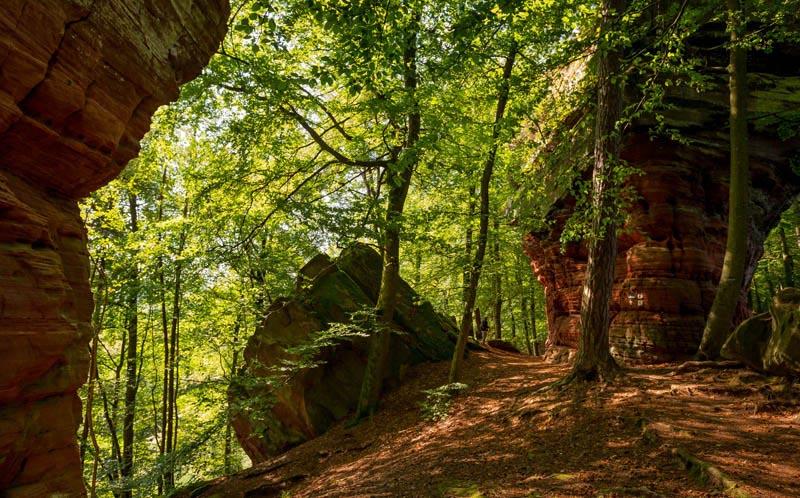 Der Altschloßpfad zum Altschloßfelsen - Unverhofft beeindruckend 168