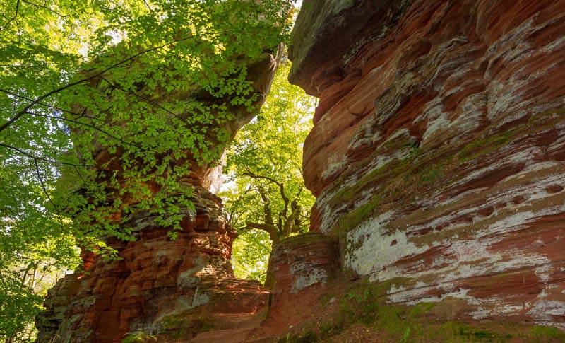 Der Altschloßpfad zum Altschloßfelsen - Unverhofft beeindruckend 170