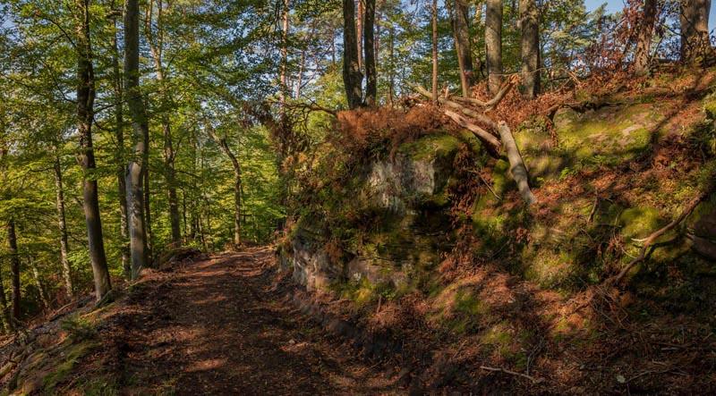 Der Altschloßpfad zum Altschloßfelsen - Unverhofft beeindruckend 121