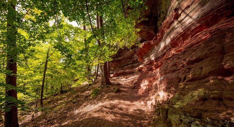 Der Altschloßpfad zum Altschloßfelsen - Unverhofft beeindruckend 198