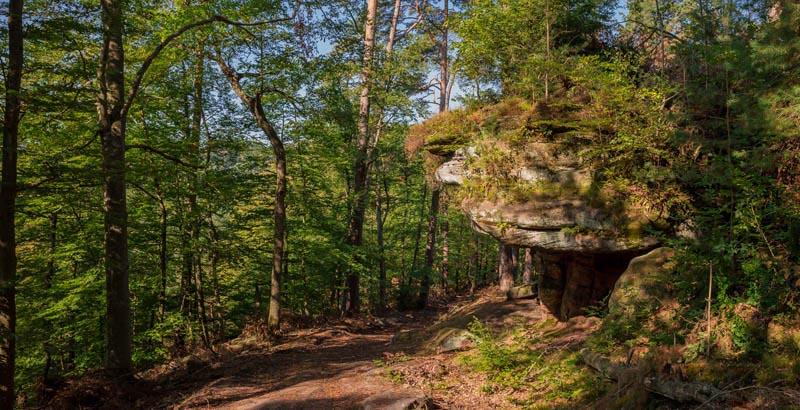 Der Altschloßpfad zum Altschloßfelsen - Unverhofft beeindruckend 122