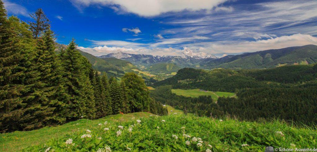 Wanderung Lammertaler Urwald 48