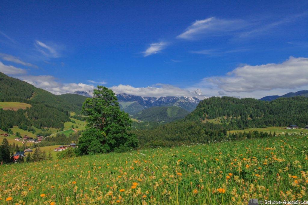 Wanderung Lammertaler Urwald 4