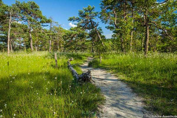 Die schönsten Wanderwege 19