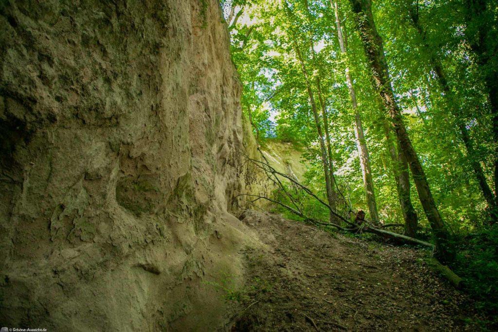 Höhlen- und Schluchtensteig Kell 81