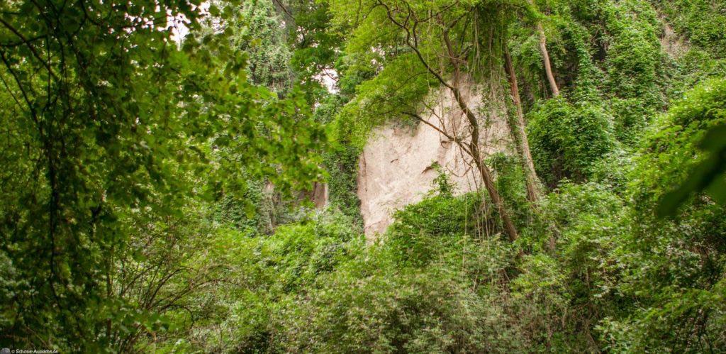 Höhlen- und Schluchtensteig Kell 66