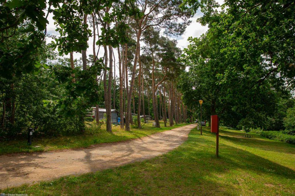 Campingplatz Schwaan - Charmant mit etwas Ossi-Feeling 3