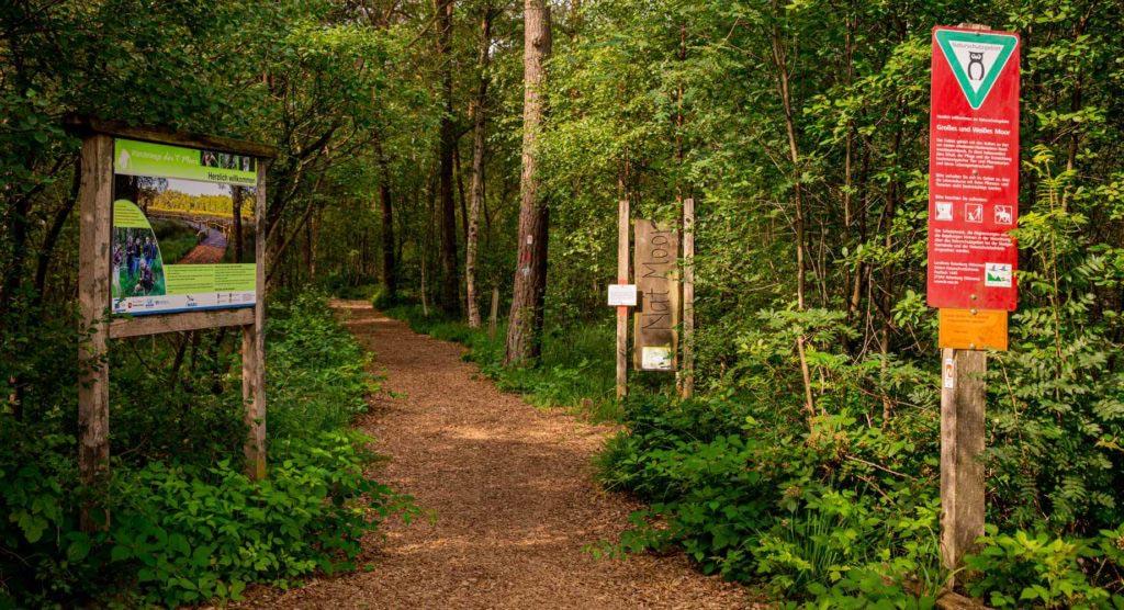 Nordpfad Dör't Moor - Zwischen Urwald und Pfaden 97