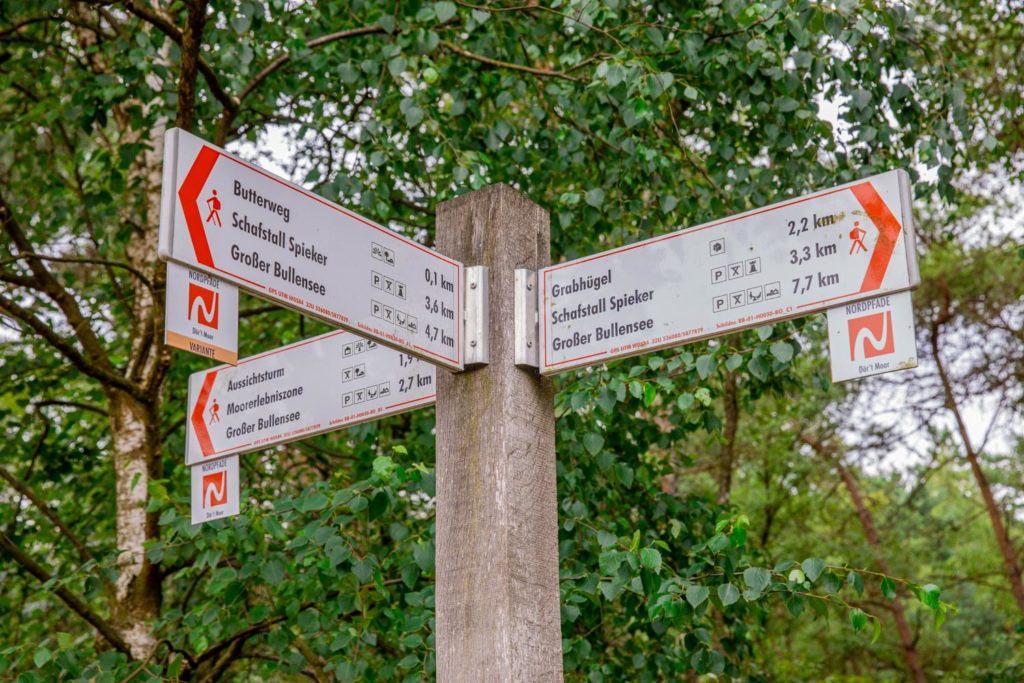Nordpfad Dör't Moor - Zwischen Urwald und Pfaden 121