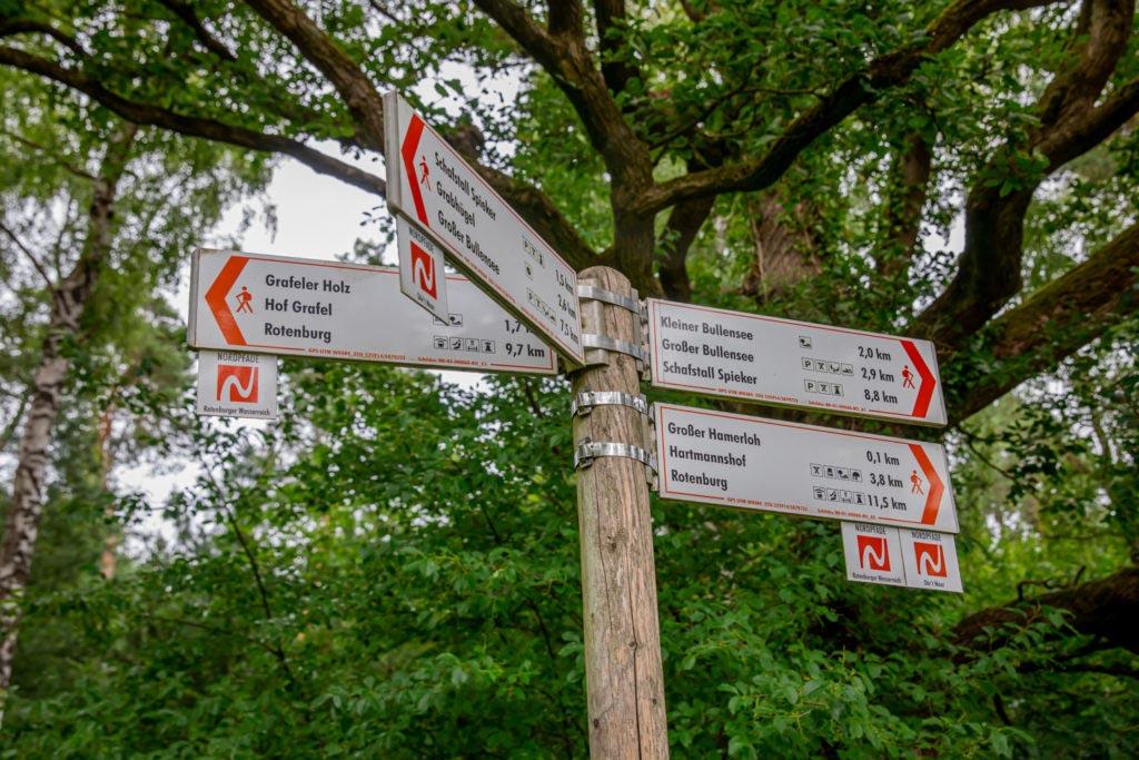 Nordpfad Dör't Moor - Zwischen Urwald und Pfaden 151