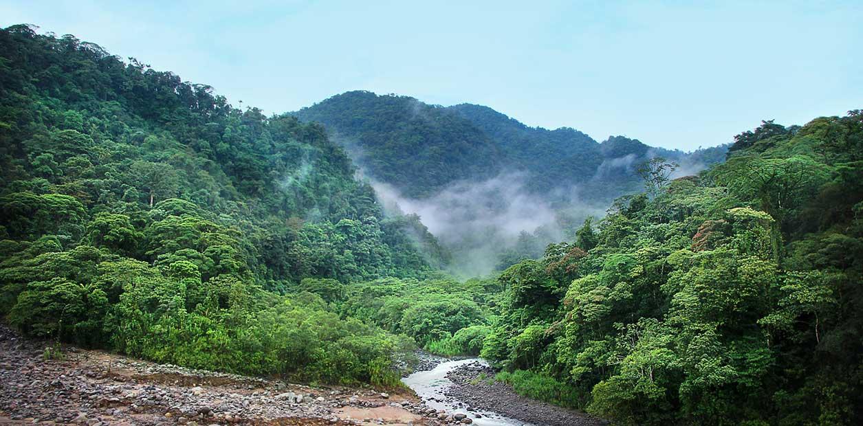 Costa Rica Nationalpark
