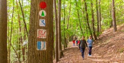Wanderblog - Finde die schönsten Wanderwege und Ausflüge 1