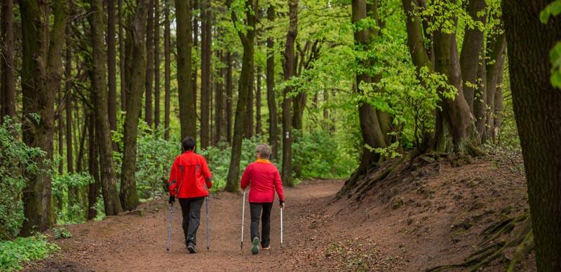 Nordic Walking 14