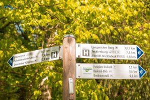 Nordpfad Dör't Moor - Zwischen Urwald und Pfaden 87