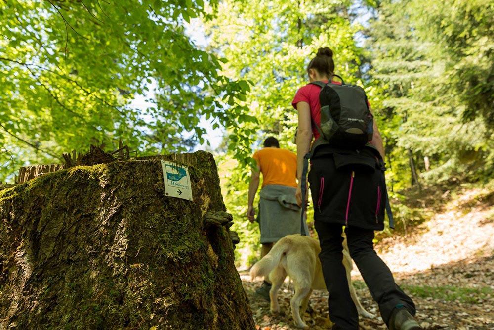 Karwendelmarsch - Die 24h Wanderung in Seefeld / Achensee 1